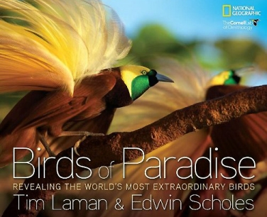 Birds of Paradise by Tim Latham and Ed Scholes